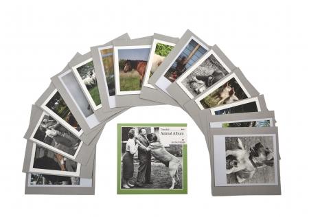 Timeslide Conversation Cards - Animals Album
