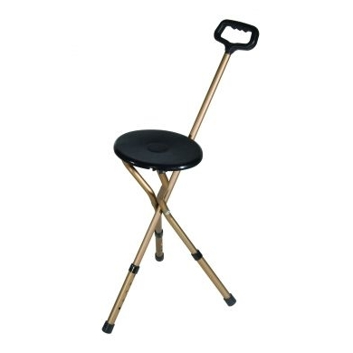 Adjustable Walking Stick and Seat