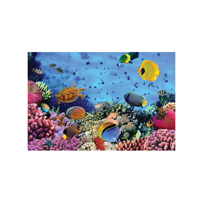 Coral Reef Jigsaw Puzzle (1000 pcs)