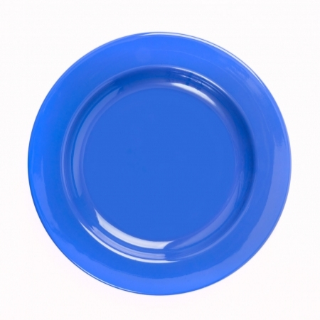 "6 Healthcare Plates 10""/254mm. Different colours available"