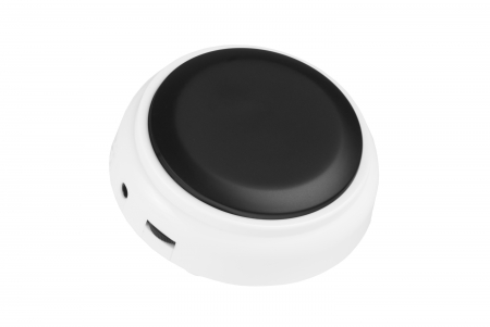 Radio Controlled Talking Button Clock