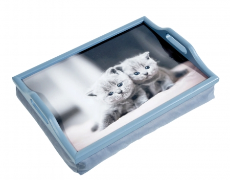 Kittens Lap Tray With Cushion