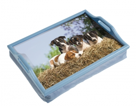 Puppies Lap Tray With Cushion