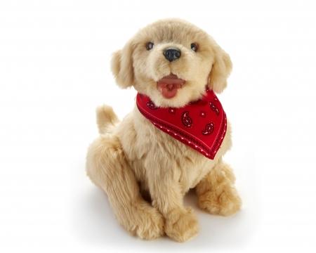 Golden Pup Dementia Companion Pet